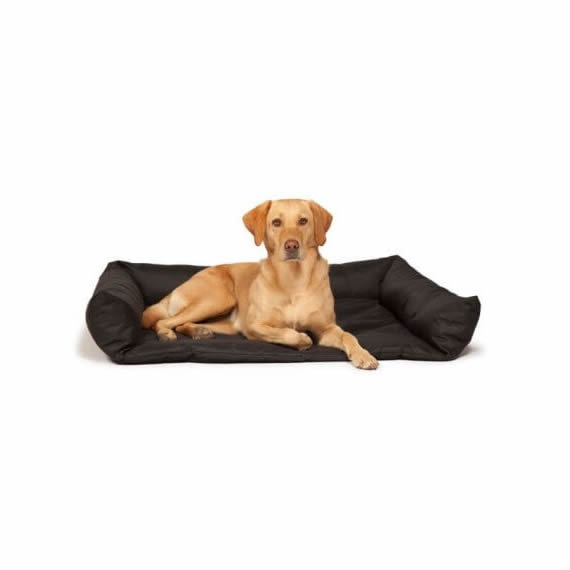 Boot-Bed-with-Dog-2-e1490787209921-1.jpg