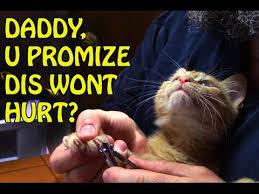 daddy promise.jpg