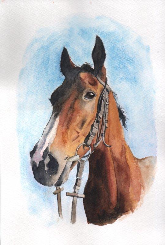 Horse copy.jpg