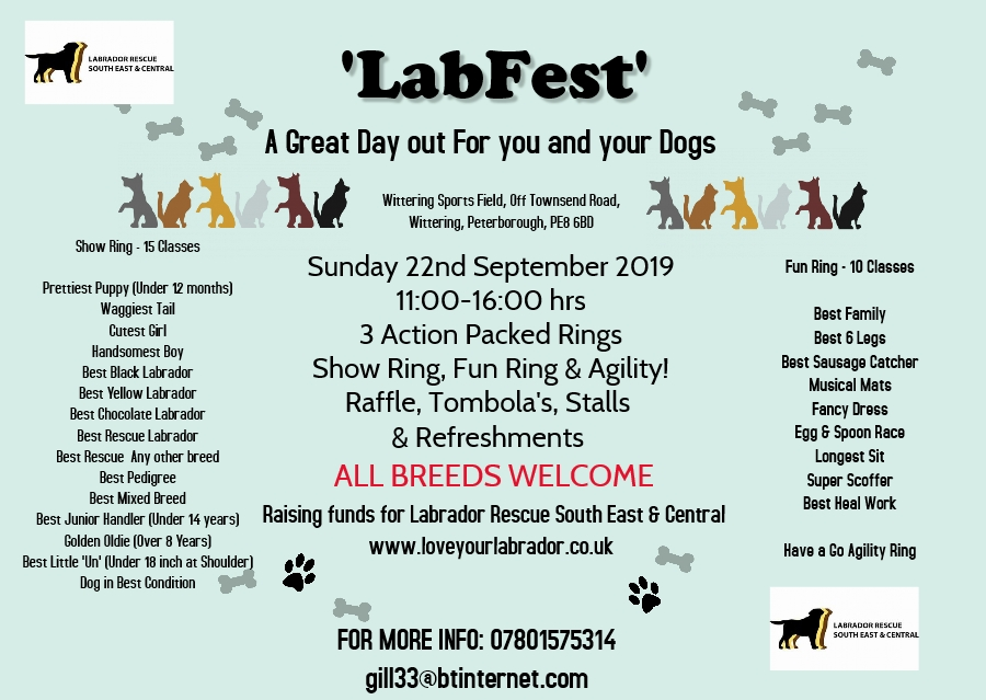 Labfest Poster.png