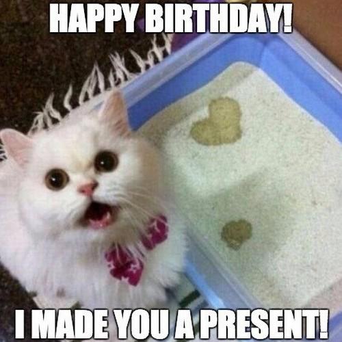 liiterbox_cat_happy_birthday_cat_meme1.jpg