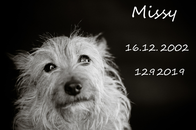 Miss goodbye.jpg