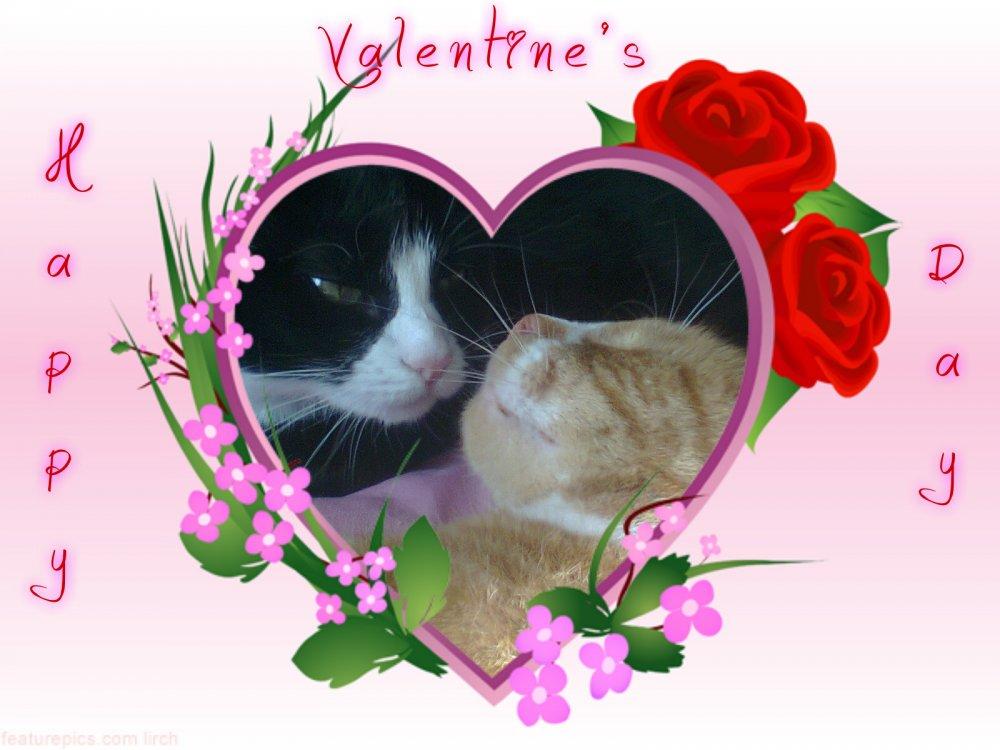 Valentine pair2.jpg