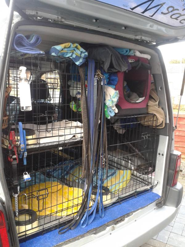Dogwalkers Whats The Inside Of Your Van Like